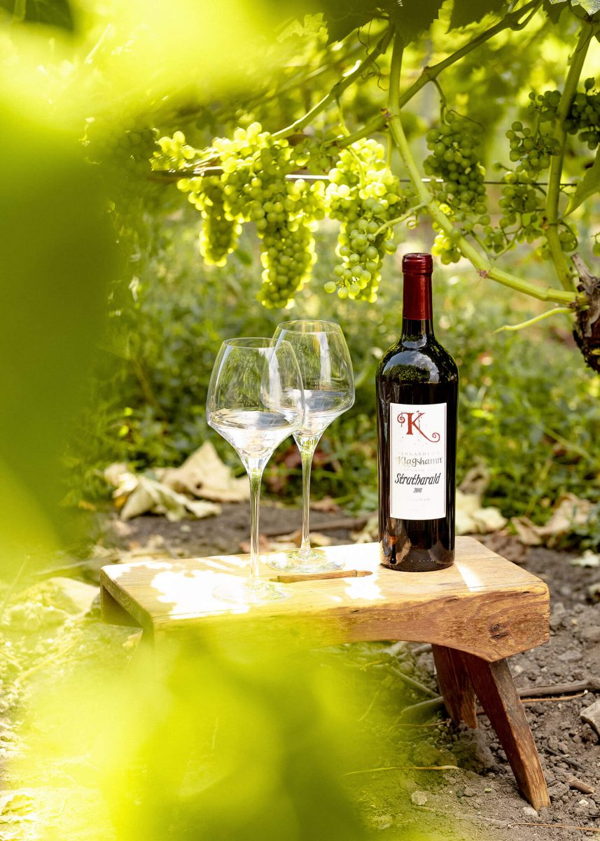 Wine bottle in the shade. The sun is out. Grapes in the background