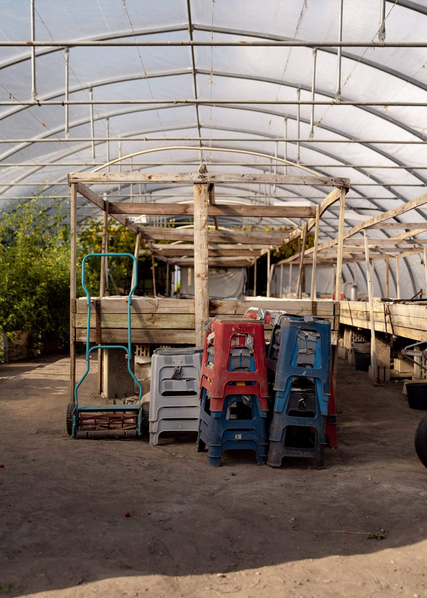 The green house where they plant the grapes