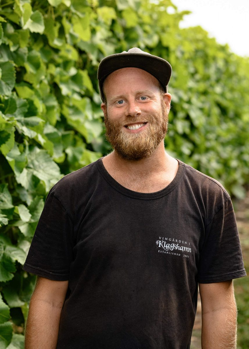 Portrait of vineyard worker. Smiling and look happy.