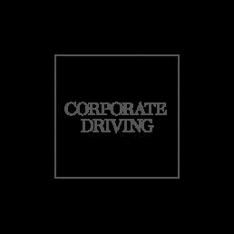 Design af logo til privatchauffør