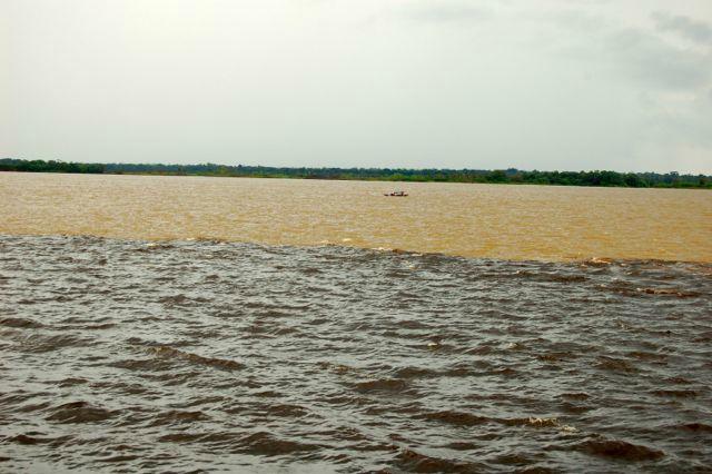 Amazonas, the meeting of waters