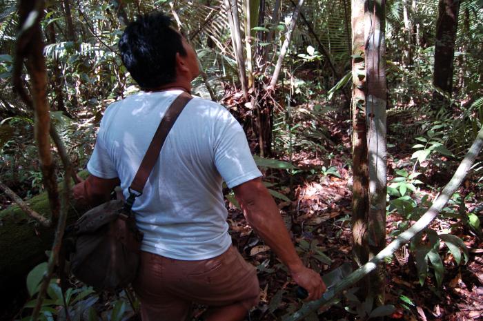 Overlevelsetrening i Amazonas