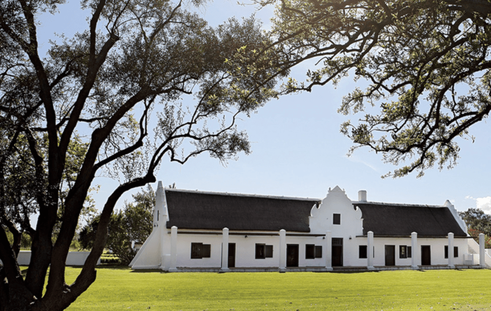 Spier, Stellenboch, vingårder