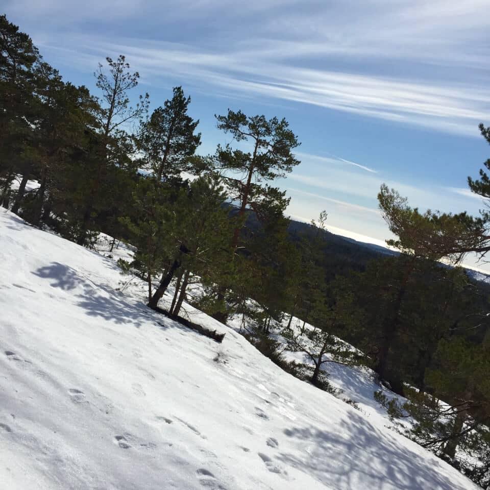 Utsikt fra Sletthei, Risør