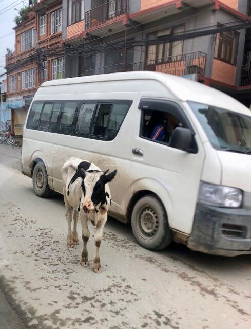 kathmandu45a