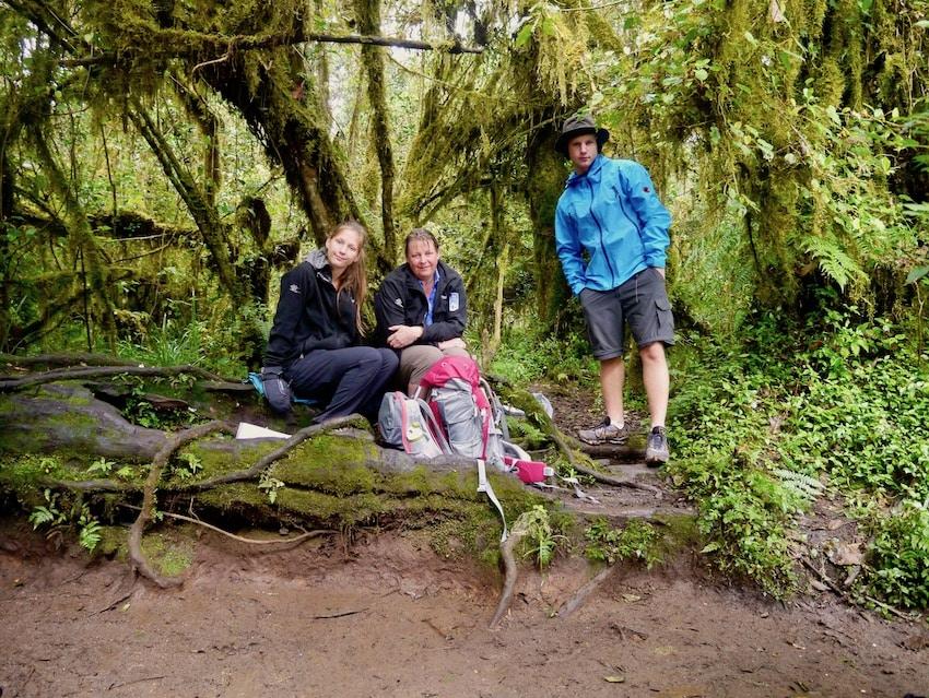 I regnskogen på vei opp Machame route, Kilimanjaro