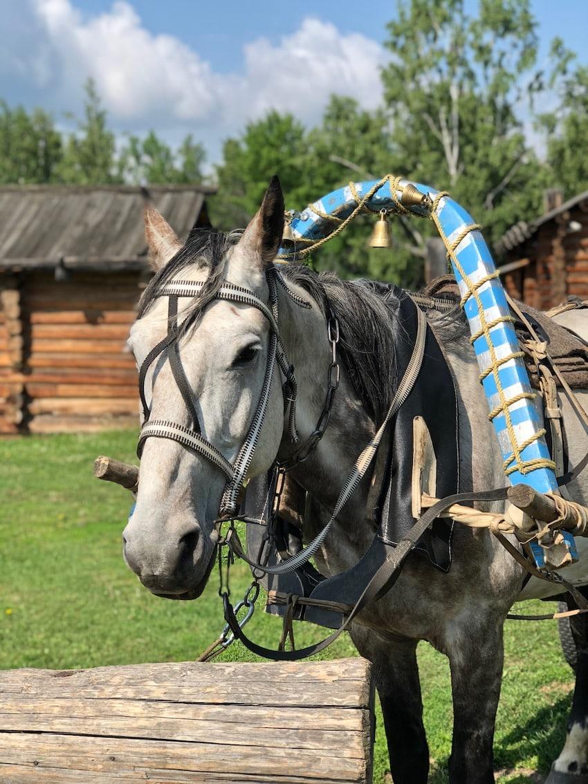 Taltsy museum, Irkutsk