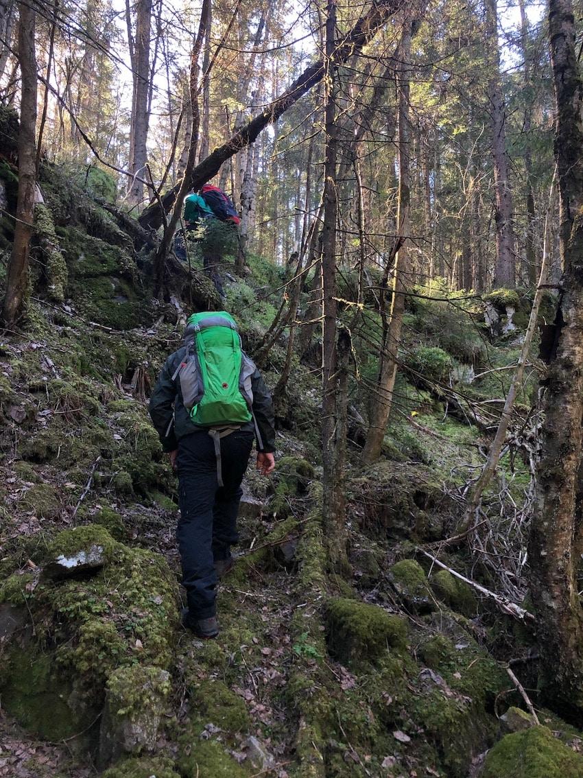 Lørenskogs høyeste topp Svartåsen