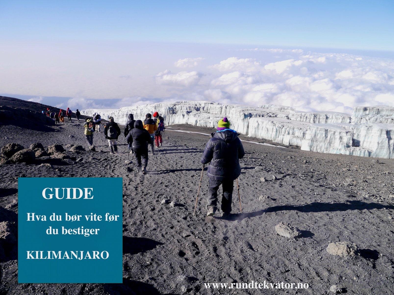 Guide til Kilimanjaro