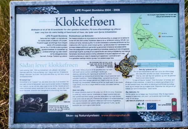 birkholm-klokkefroeen-information