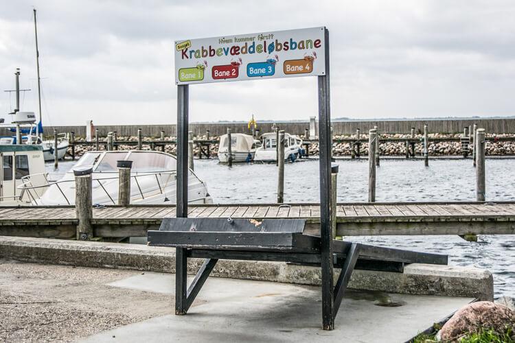 baagoe-havn-krabber