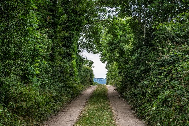 barsoe-vej