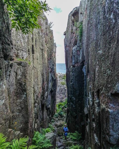 randkloeve-skaar-bornholm