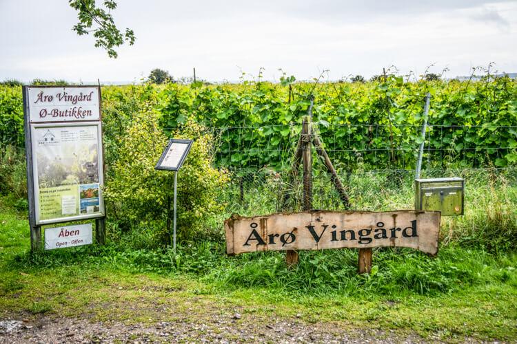 aaroe-vingaard