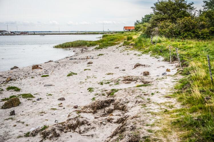 lyoe-strand