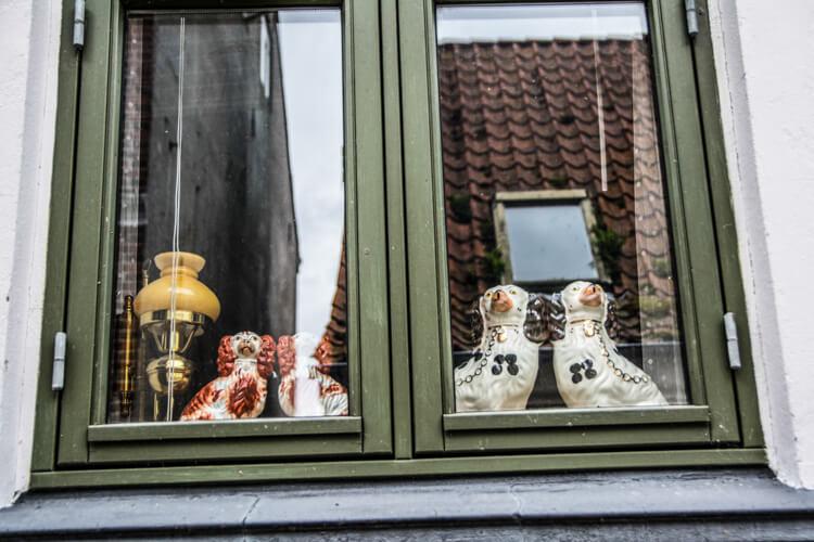 aeroe-tradition-hunde