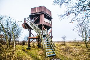 Fugletårnet ved Nyord Enge