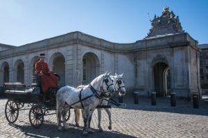 hestene-christiansborg-slot