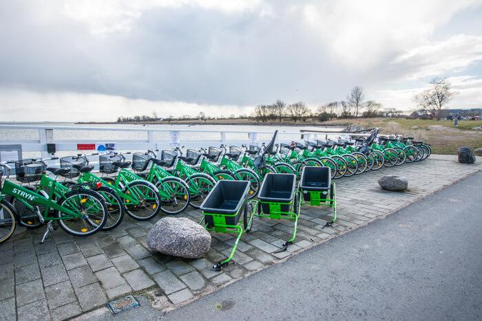 strynoe-cykeludleje