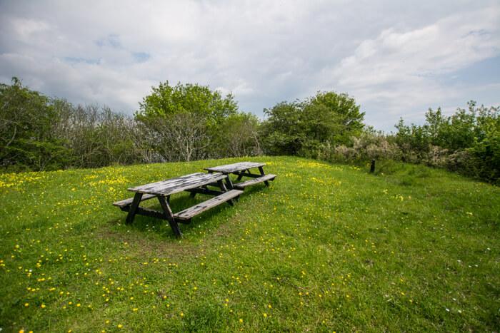 eskilsoe-picnic