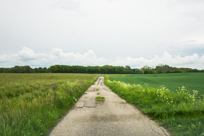 vejen-ned-mod-borgoe