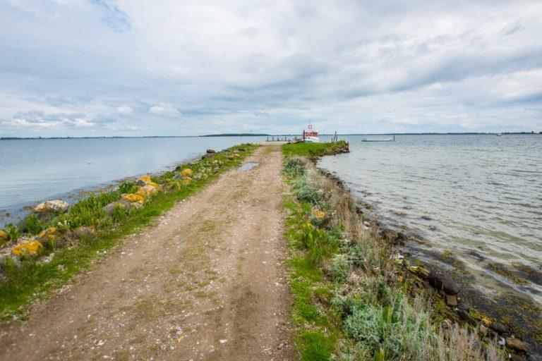 enehoeje-bro