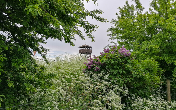 udsigtstaarn-saltholm