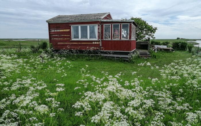 hytte-saltholm