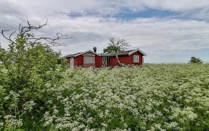 hytte-oest-saltholm