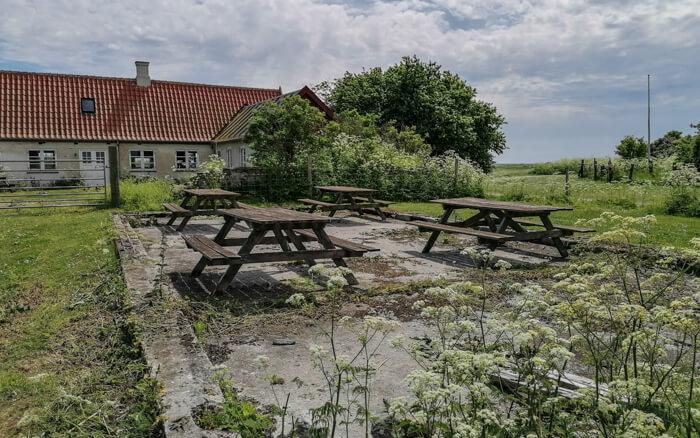 picnic-saltholm