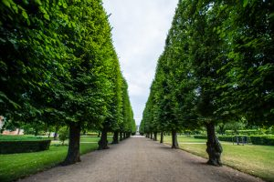 Kongens Have – Rosenborg Slotshave