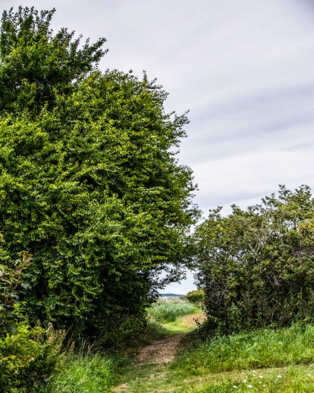 trampesti-oroe-natur-rundt-i-danmark