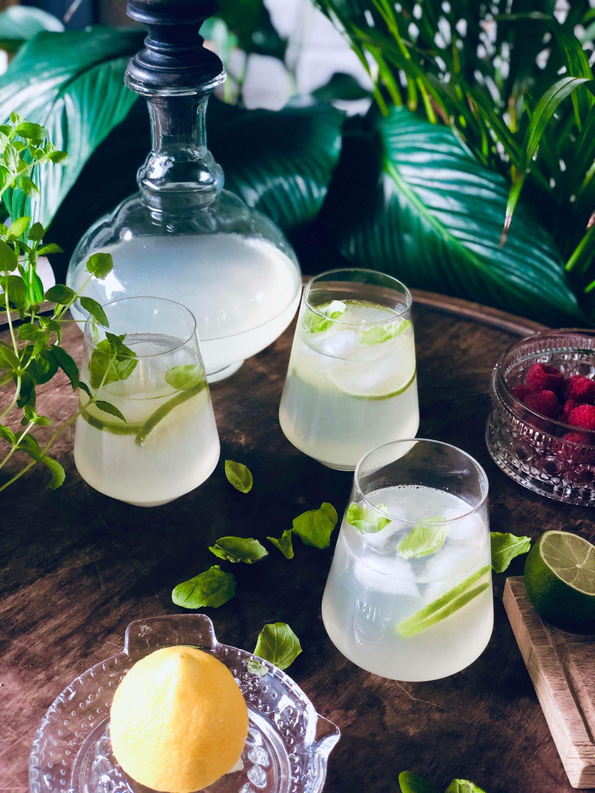 Sommerlig lemonade med sitron, lime og mynteblader