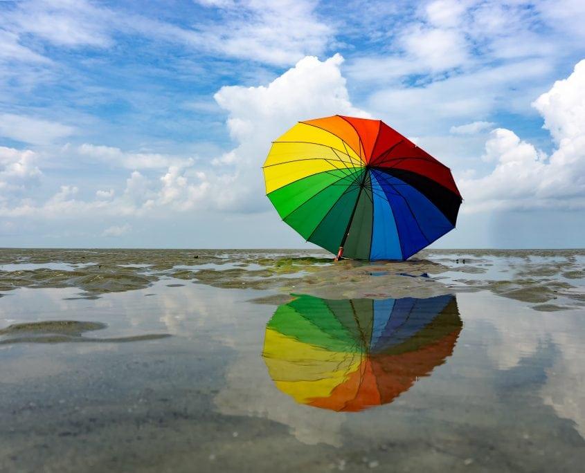 Samverkan för Hanöbukten är en paraplyorganisation.