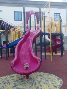 Cat on slide