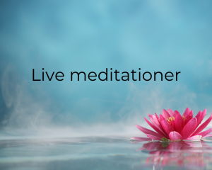 Live meditationer
