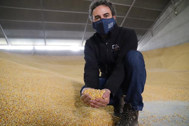 Nuevas semillas para el maíz de las Vegas Altas