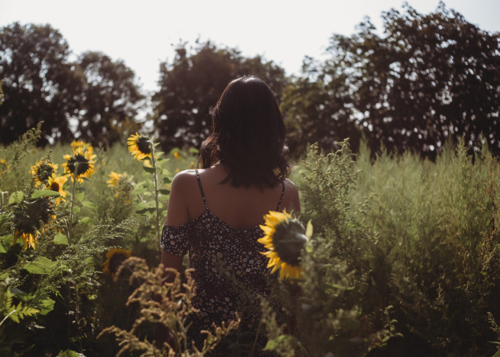 sunflower field boudoir photography Leicester