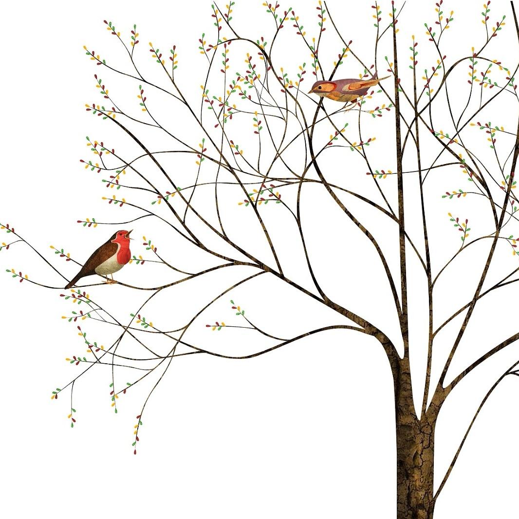 'Vogels'