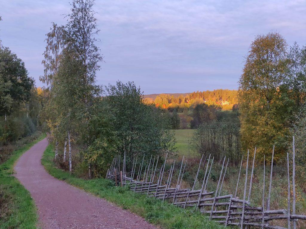Vägen över Hemmoran mot Insjön