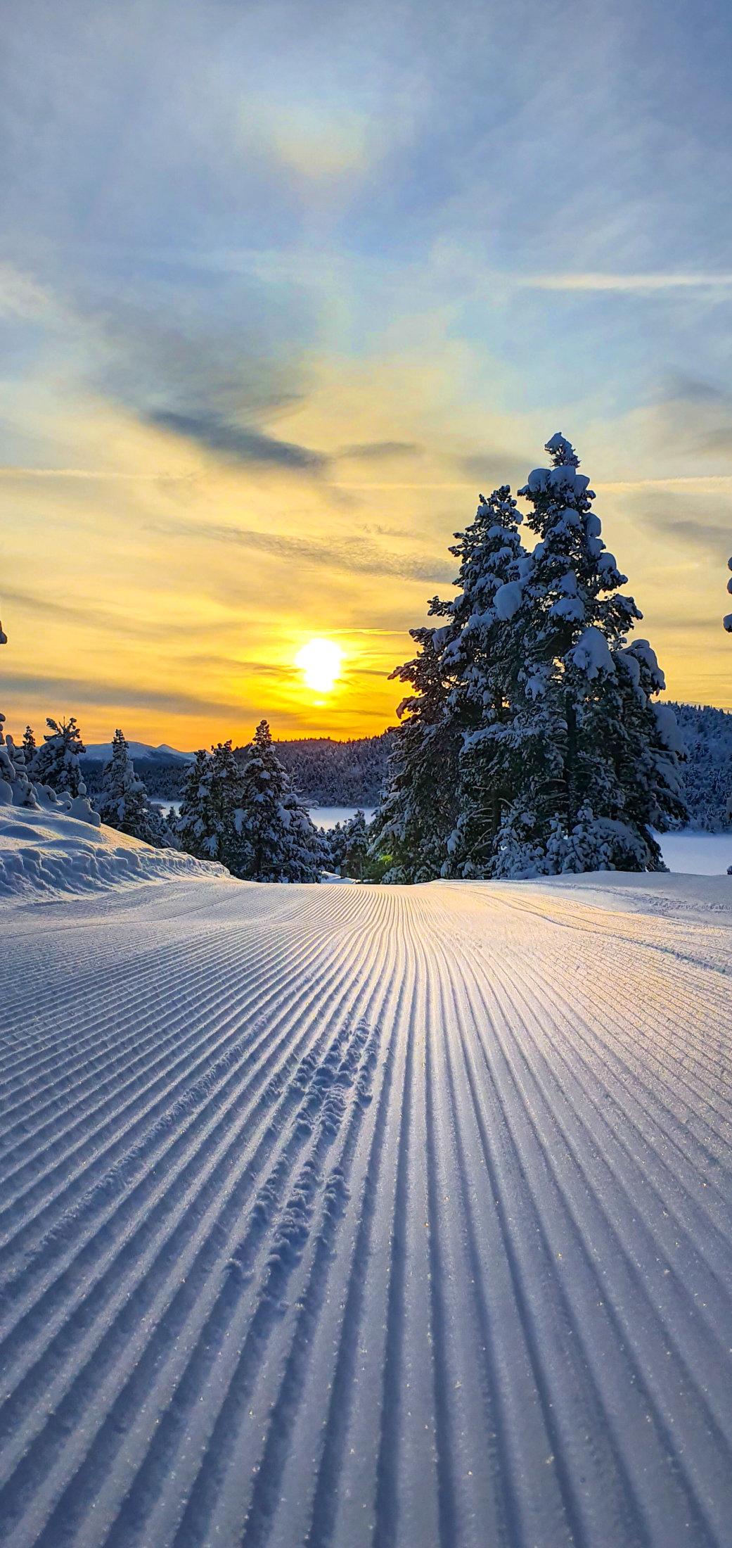 skiløype i solnedgang