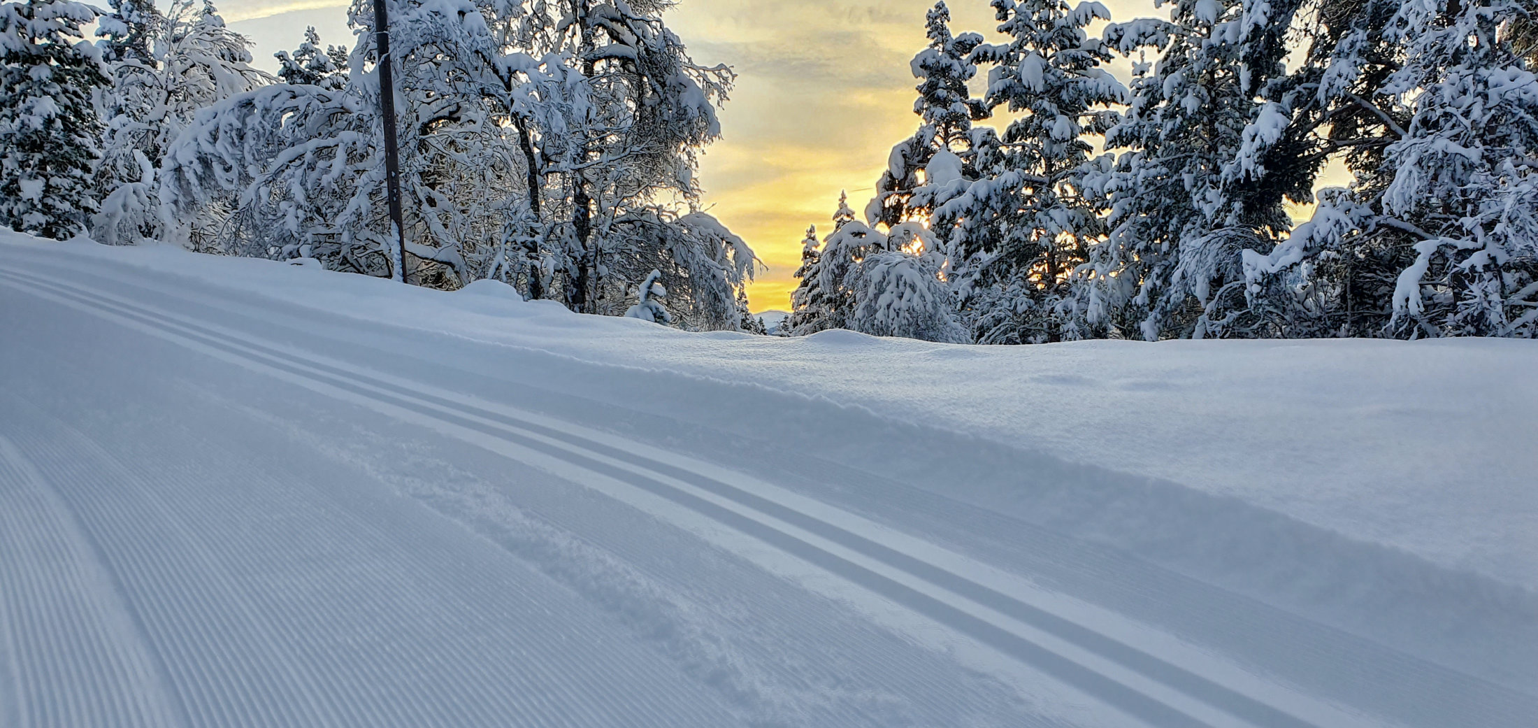 skiløype vinter