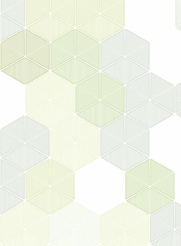Hexagon-Green-D