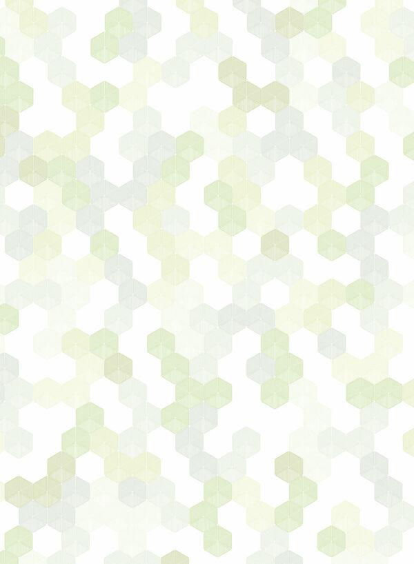 Hexagon-Green-T