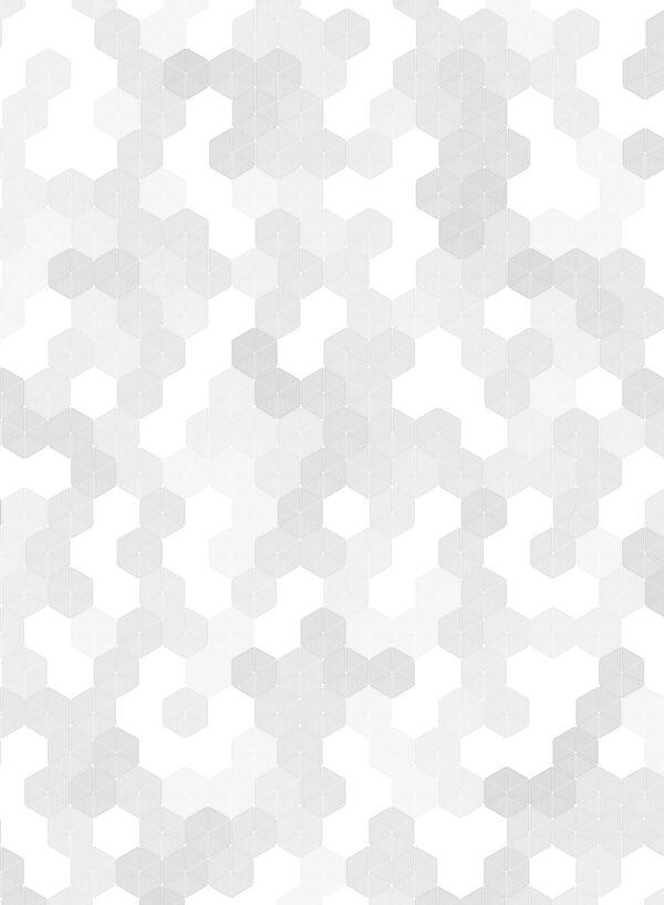 Hexagon-Grey-T