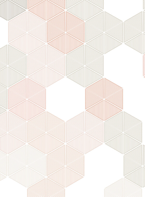 Hexagon-Pink-D