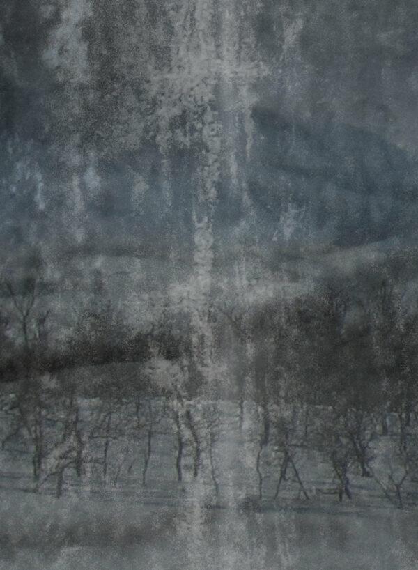 Lost-Landscape-Dark-D2