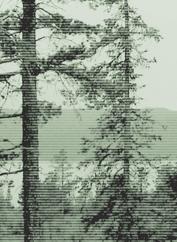Panorama-Bluegreen-Dark-D