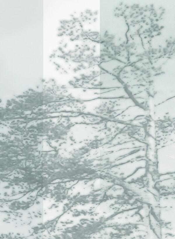 Panorama-Bluegreen-light-D
