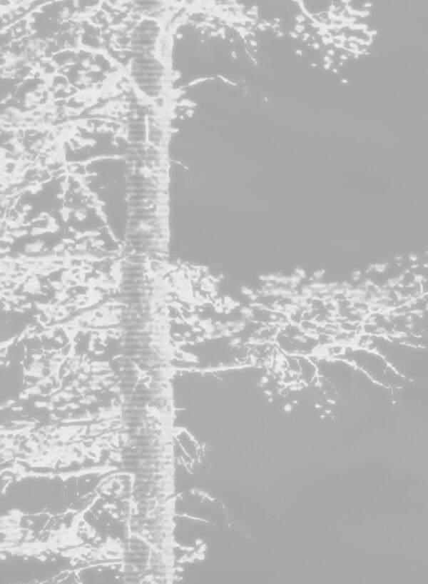 Panorama-Dark-Grey-D